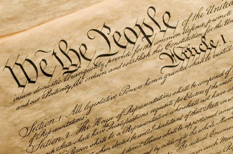 constitution-activity